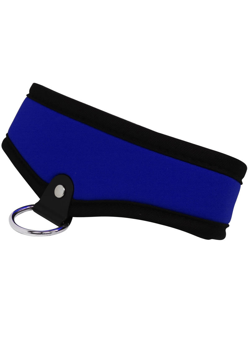 Whip Smart Collar Passion Blue